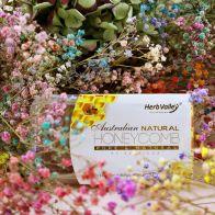澳大利亚天然蜂巢蜜 (200克)